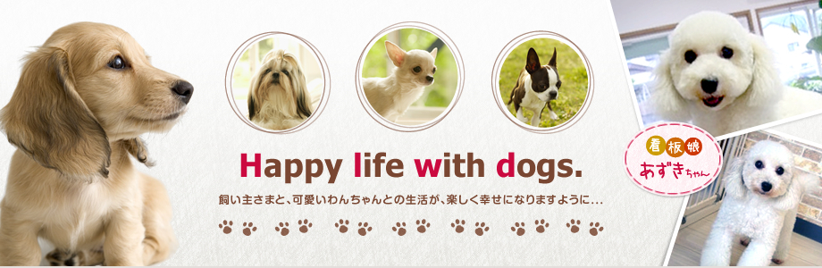 Happy life with dogs.
